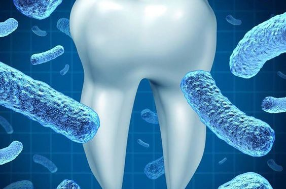 4-dental-hygiene-tips-for-lifelong-healthy-teeth-and-gums