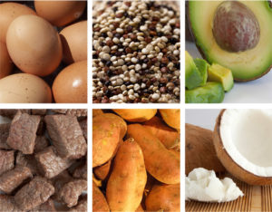 Nutrition 101: A Beginner's Guide to Macronutrients