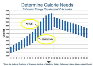 how-many-calories-should-i-take